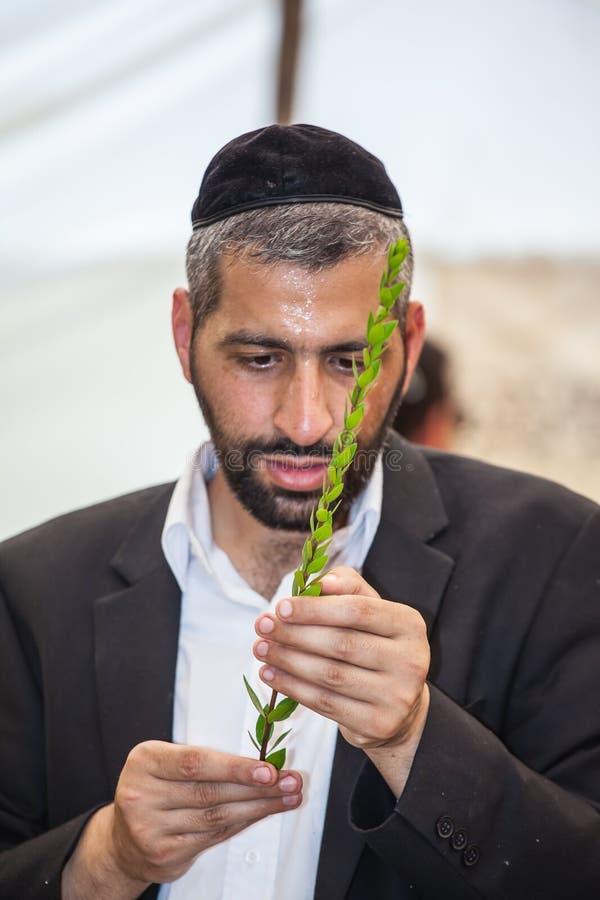 Młody człowiek religijny w szarej jarmułce zdjęcie royalty free