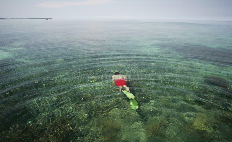 Młody człowiek snorkeling obraz stock