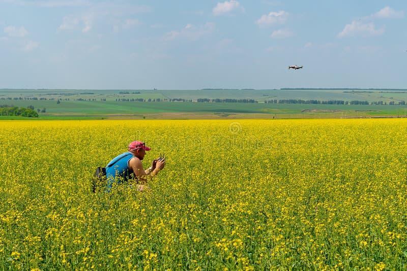 Młody człowiek w czerwonej nakrętce błękitnej koszulce i wszczyna trutnia na żółtym polu kwiaty na słonecznym dniu fotografia royalty free