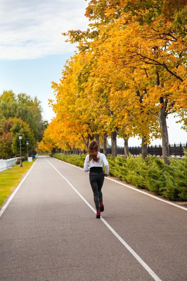 Młody dorosłej kobiety bieg w jesieni lasowej dziewczynie jogging w drodze zdjęcia royalty free