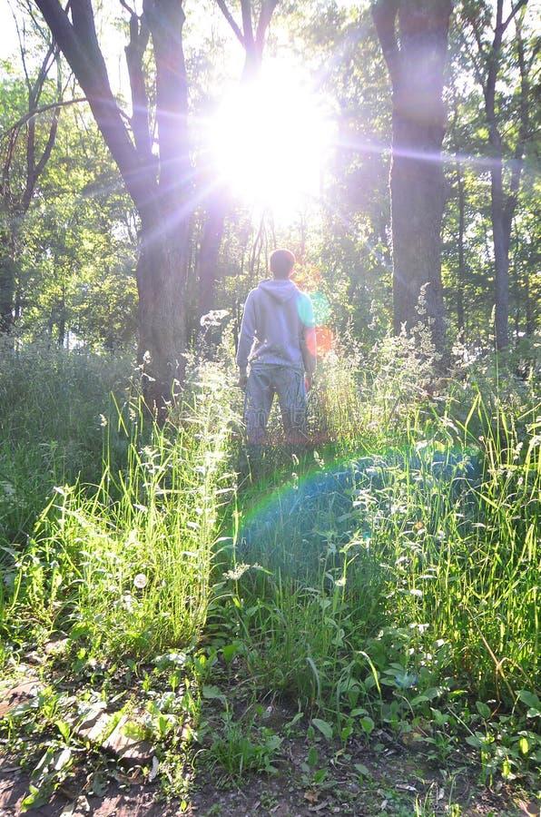 Młody facet w szarości bawi się kostiumów stojaki naprzeciw słońca wśród fotografia stock