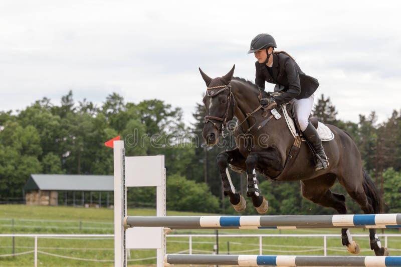 Młody horsewoman skacze na ciemnego brązu koniu obrazy stock