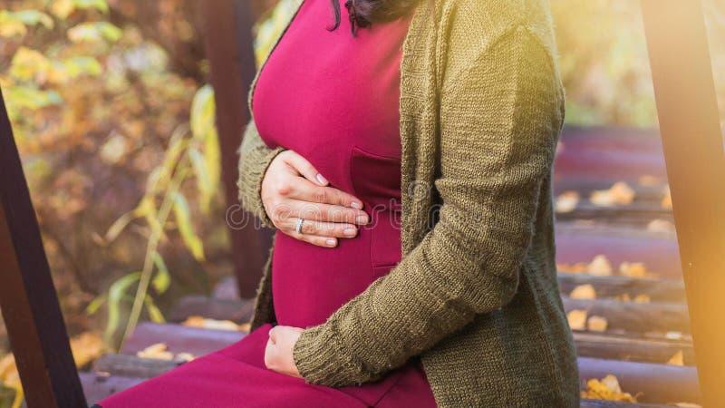 Młody kobieta w ciąży chodzi w jesień parku Ona delikatnie zdjęcie stock