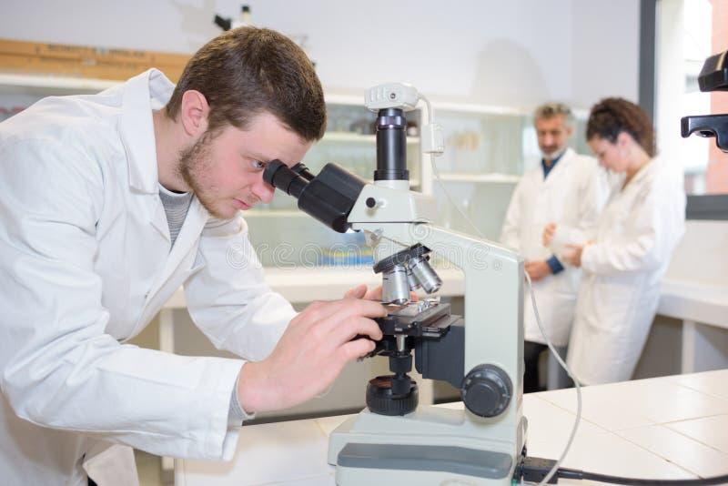 Młody laborancki asystent przygotowywa instrument dla chemicznego lab zdjęcia royalty free