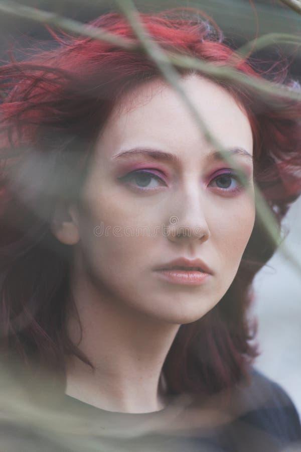 Młody niebieskie oko kobiety portret przez gałąź naturalnego światła zbliżenia zimna plenerowego dnia zdjęcie royalty free