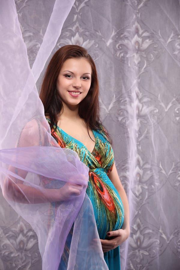 Młody piękny seksowny i elegancki kobieta w ciąży obraz stock