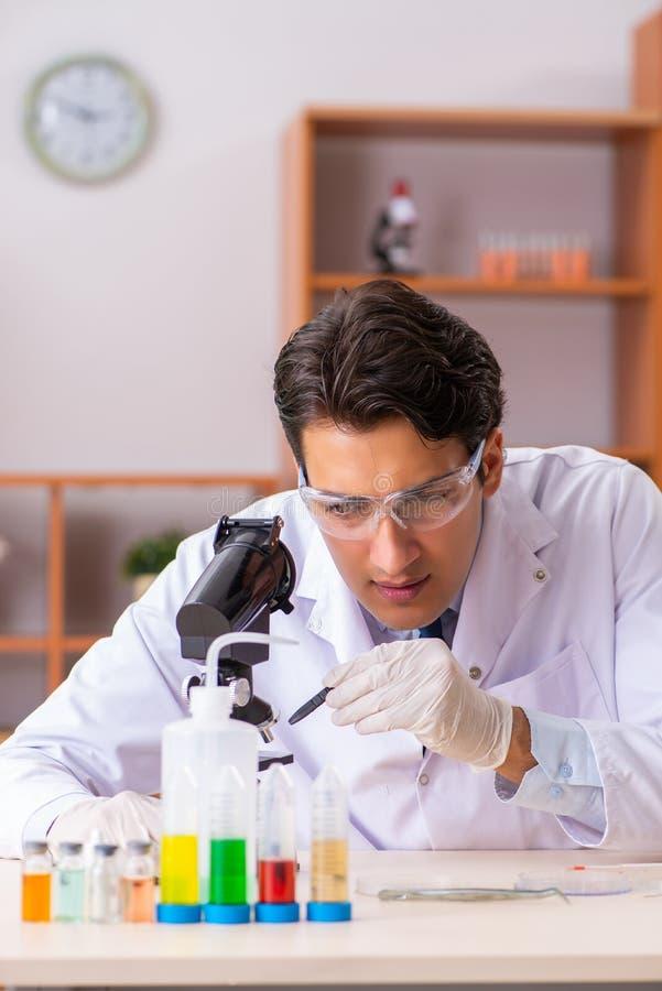 Młody przystojny biochemik pracuje w lab obrazy royalty free