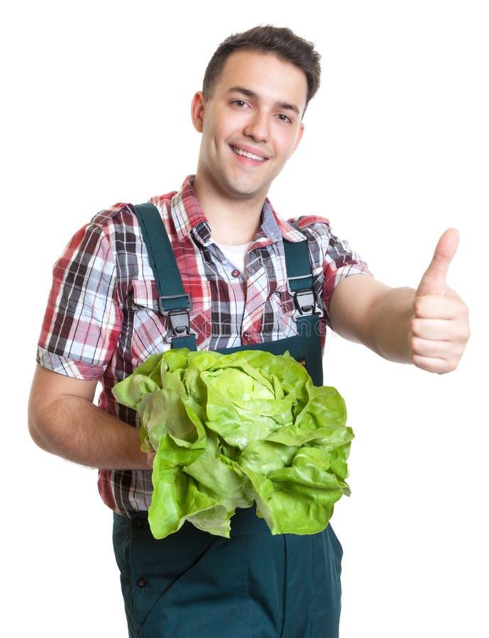 Młody rolnik z sałatą pokazuje kciuk up fotografia stock