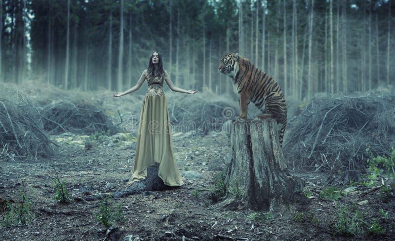 Młody seksowny traner z tygrysem obrazy royalty free