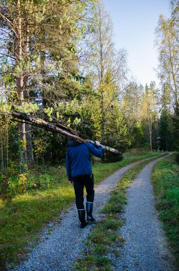 Młody silnego mężczyzna przewożenie notuje dalej drewna fotografia stock