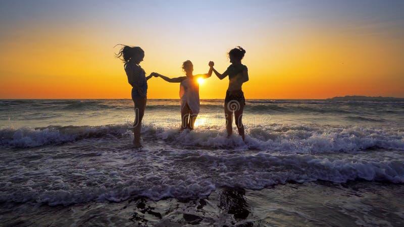 Młody zabawy przyjęcie ludzie tanczy i rozpyla przy plażowym zmierzchem obraz stock