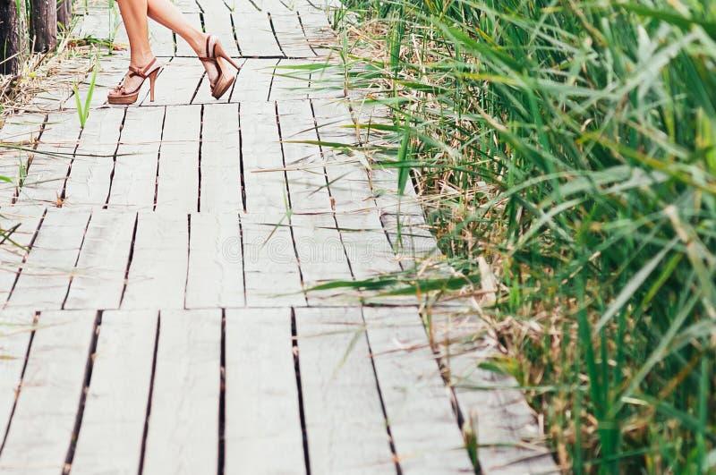 Młodych kobiet nikłe nogi w szpilkach zdjęcie royalty free