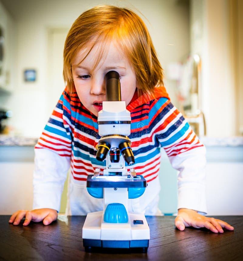 Młodzi chłopiec spojrzenia Przez mikroskopu obrazy royalty free
