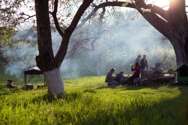 Młodzi ludzie ma grilla out w ogródzie zdjęcia stock