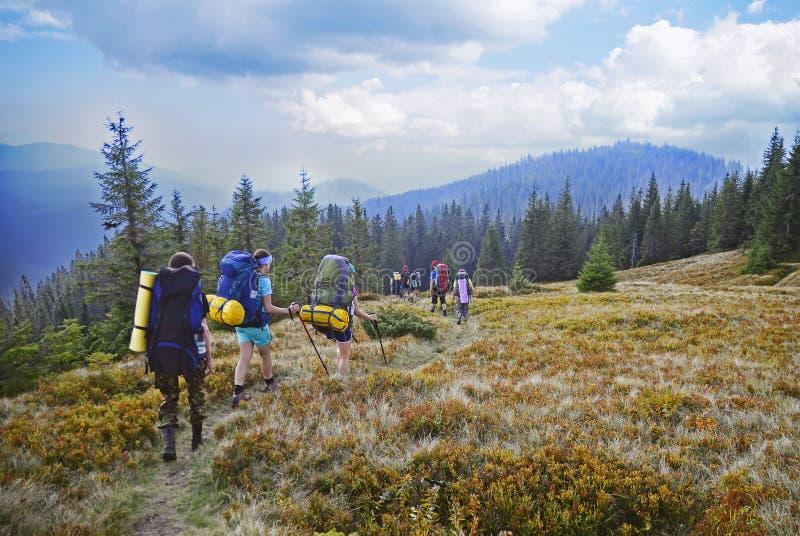 Młodzi ludzie wycieczkują w Karpackich górach w lecie fotografia royalty free