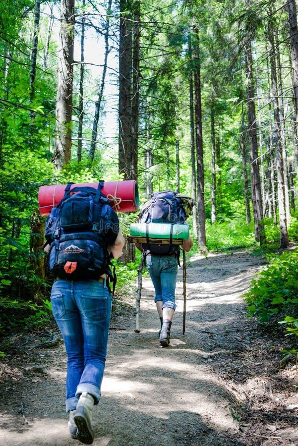 Młodzi ludzie wycieczkuje z plecakami w lesie obrazy royalty free
