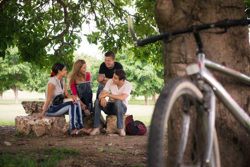 Młodzi ucznie robi pracie domowej w szkoła wyższa parku fotografia royalty free