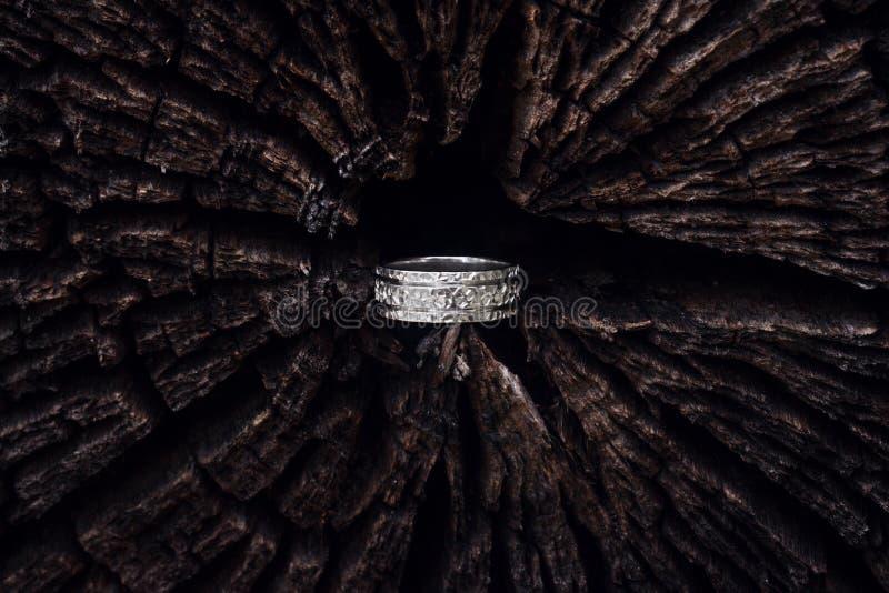 Młotkujący srebro pierścionek w drzewie obraz royalty free