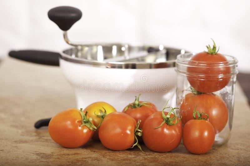 młyńscy jedzenie pomidory fotografia royalty free