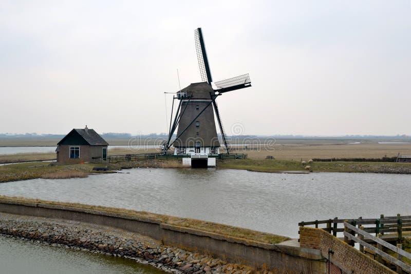 Młyn na Texel. zdjęcie stock