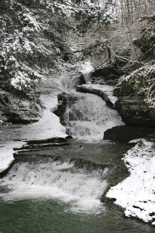 Młyn Spada przy Robert H Treman stanu parkiem w zimie obraz stock