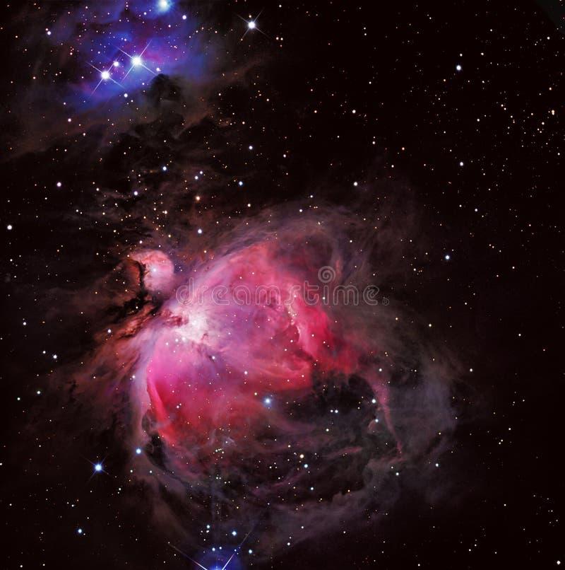 M42猎户星座星云 皇族释放例证