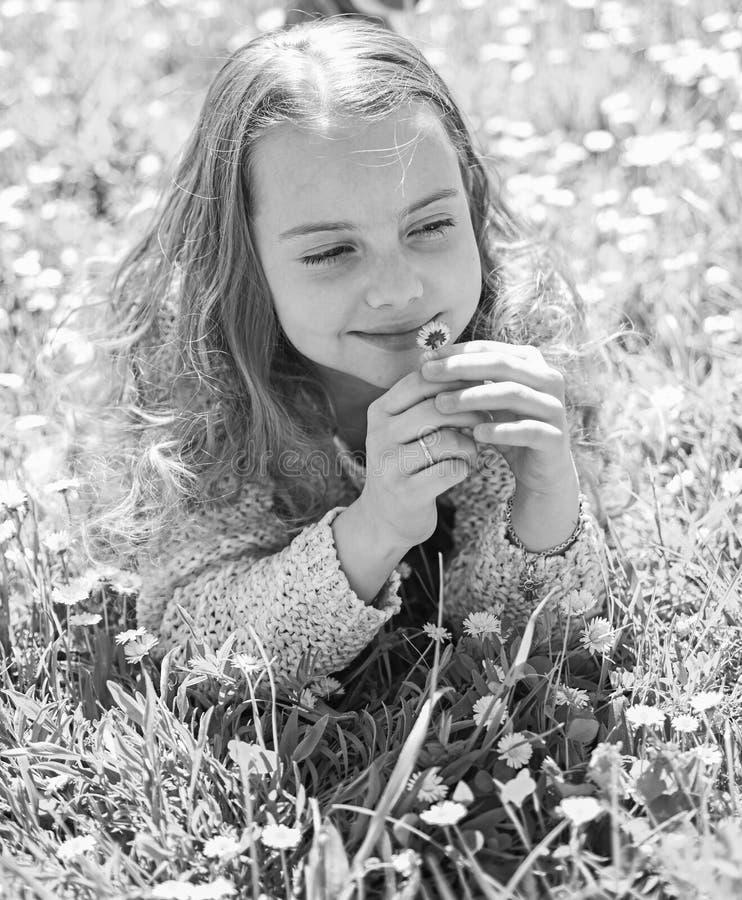 M?dchen, das auf Gras, grassplot auf Hintergrund liegt Empfindlichkeitskonzept Kind genie?en sonniges Wetter des Fr?hlinges beim  stockbild