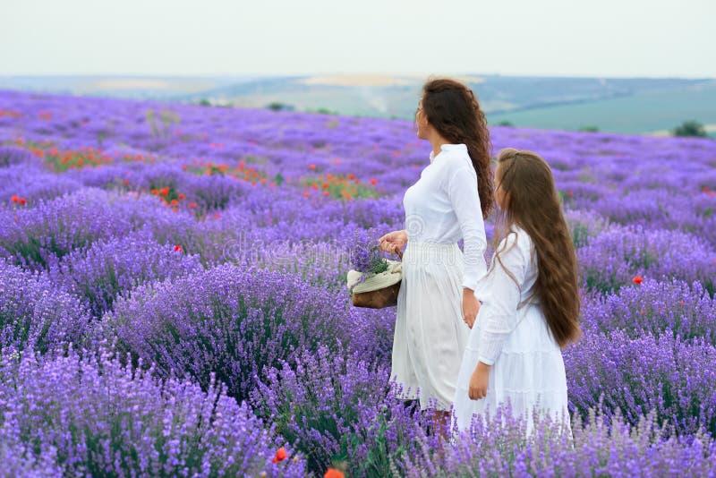M?dchen sind auf dem Lavendelblumengebiet, sch?ne Sommerlandschaft lizenzfreie stockfotos