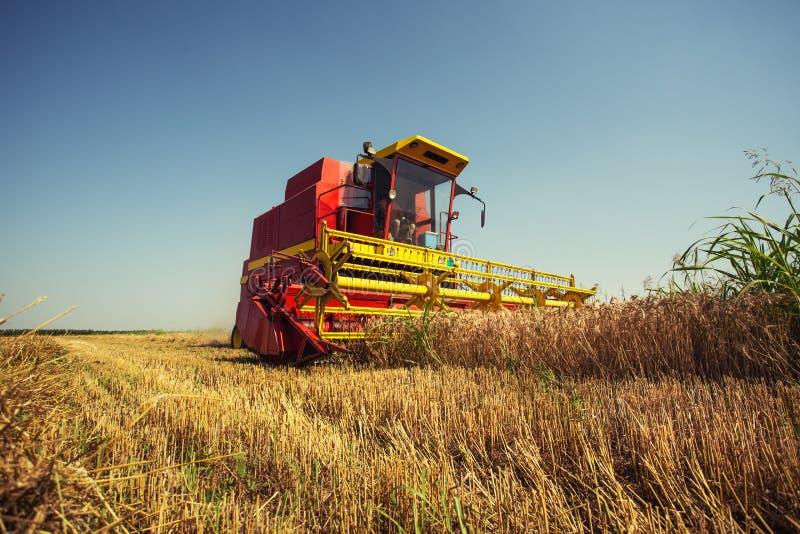 M?hdrescher, der an einem Weizenfeld arbeitet lizenzfreies stockbild