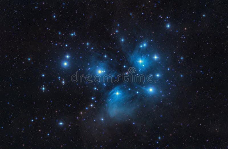 M45 il Pleiades sette sorelle aprono le stelle e lo spazio del mazzo fotografie stock