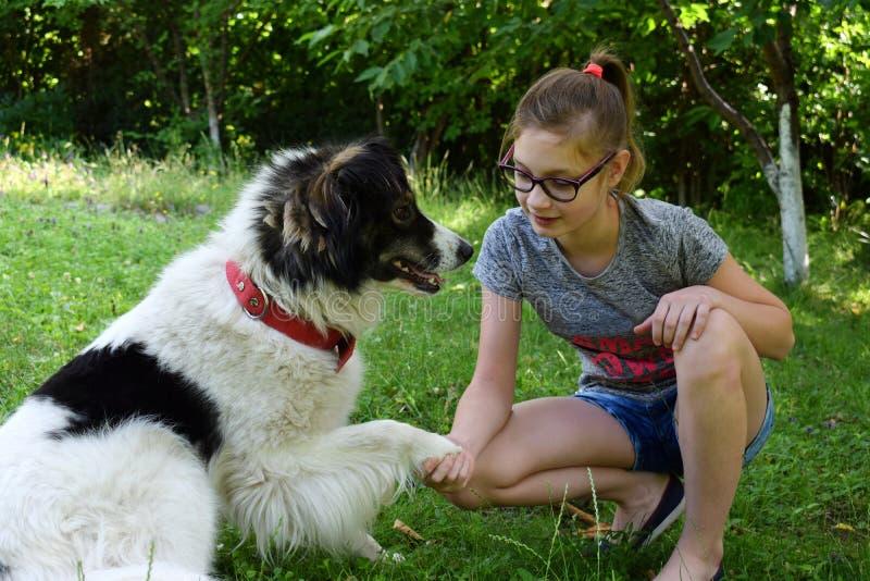 M Jugendlicher, der Karpatenschäfer Dog im Sommerpark umarmt Freundschaftskonzept des Mannes und des Tieres stockfotos