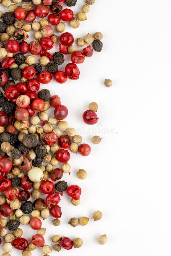M?lang? des poivrons chauds, rouges, noirs, du blanc et du poivron vert d'isolement sur le fond blanc Vue sup?rieure image libre de droits