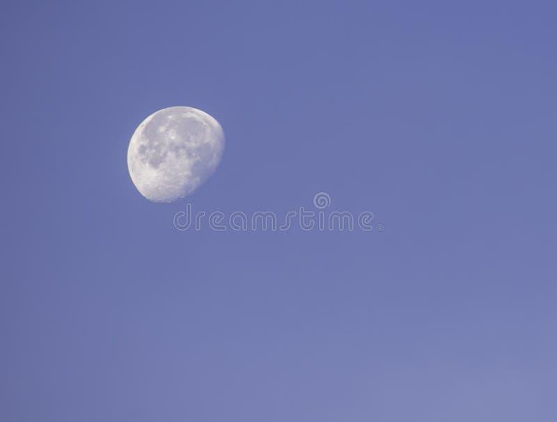M?ne i dagsljus p? den ljusa himlen fotografering för bildbyråer