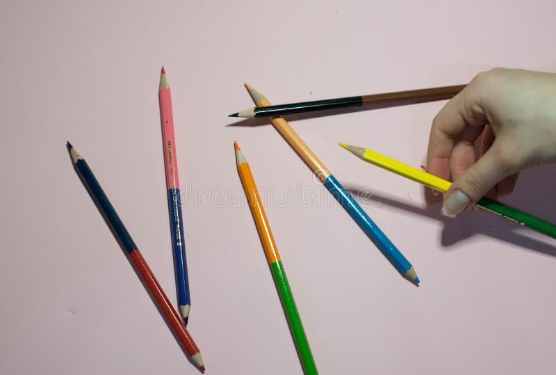 M?nga blyertspennor p? en rosa bakgrund arkivfoton