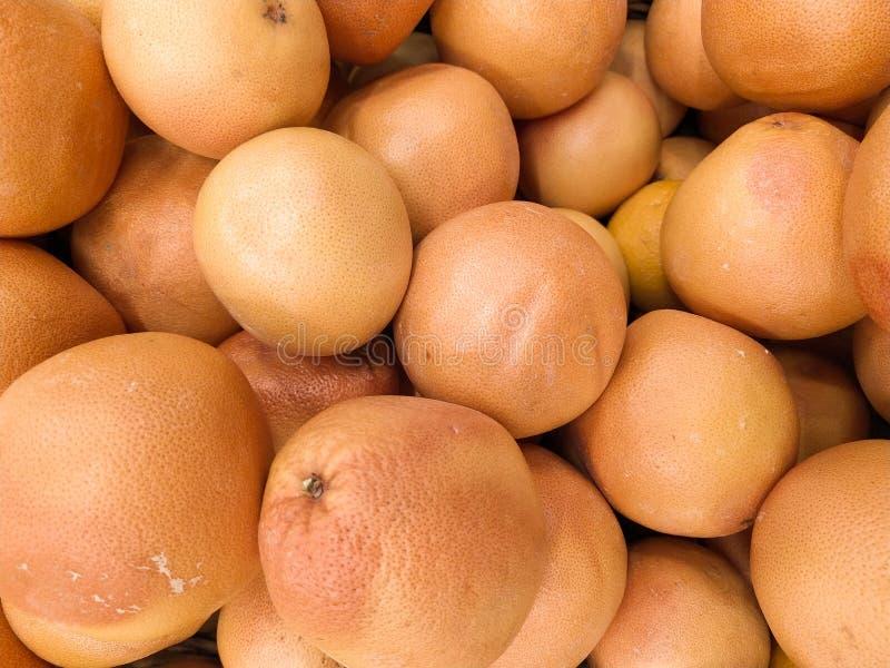 M?nga grapefruktsk?rd grapefrukt grapefrukter f?r mattexturer och bakgrunder Landskap En bakgrund av grapefrukter gata royaltyfri bild