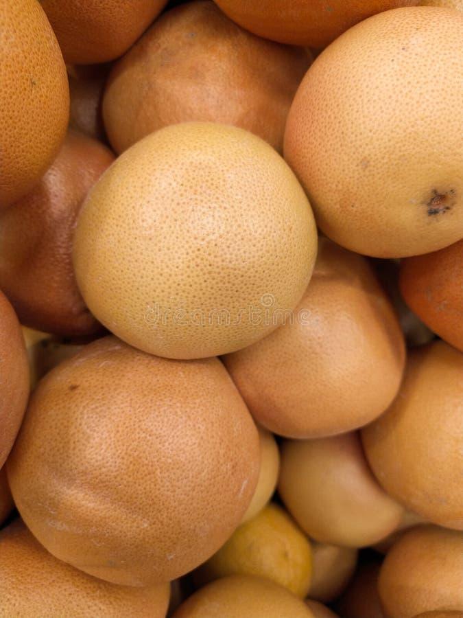 M?nga grapefruktsk?rd grapefrukt grapefrukter f?r mattexturer och bakgrunder Landskap En bakgrund av grapefrukter gata arkivfoto