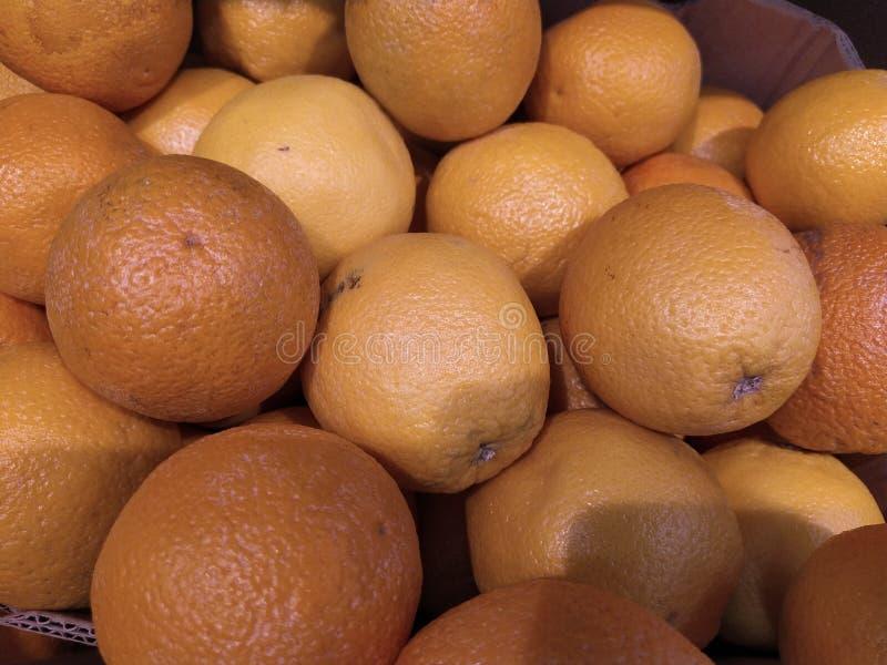 M?nga grapefruktsk?rd grapefrukt grapefrukter f?r mattexturer och bakgrunder Landskap En bakgrund av grapefrukter gata arkivfoton
