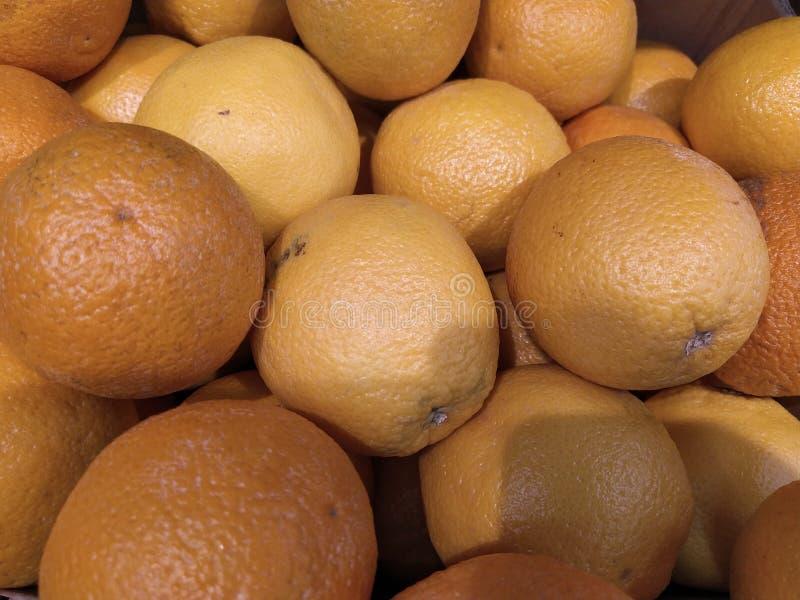 M?nga grapefruktsk?rd grapefrukt grapefrukter f?r mattexturer och bakgrunder Landskap En bakgrund av grapefrukter gata arkivbilder