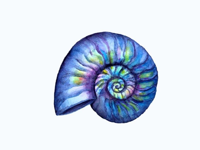 A m?o afoga a concha do mar ilustração royalty free