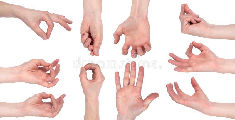 A m?o masculina vazia que faz o gesto como guardar algo isolou-se no fundo branco Grupo de imagens m?ltiplas imagens de stock royalty free