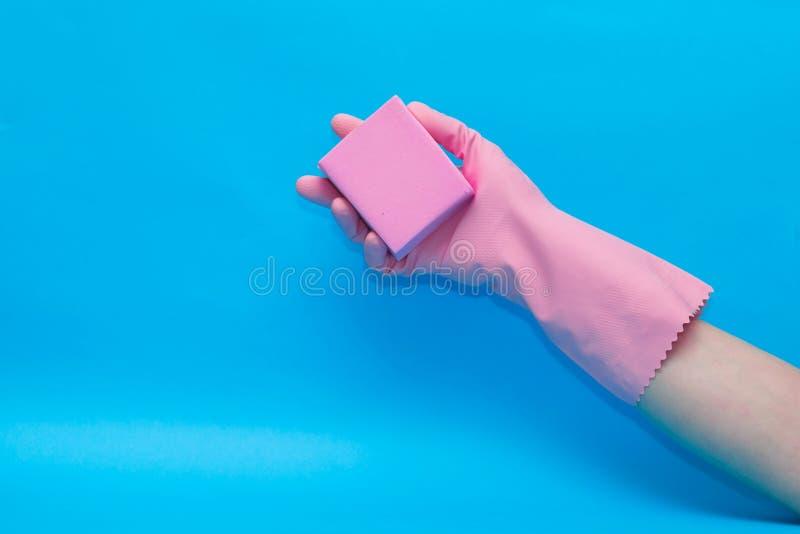 M?o na luva cor-de-rosa com a esponja cor-de-rosa no fundo azul fotografia de stock
