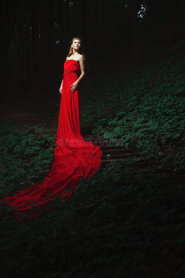 Download Młoda Kobieta Na Drabinie W Drewnie Zdjęcie Stock - Obraz złożonej z splendory, drzewa: 65225194