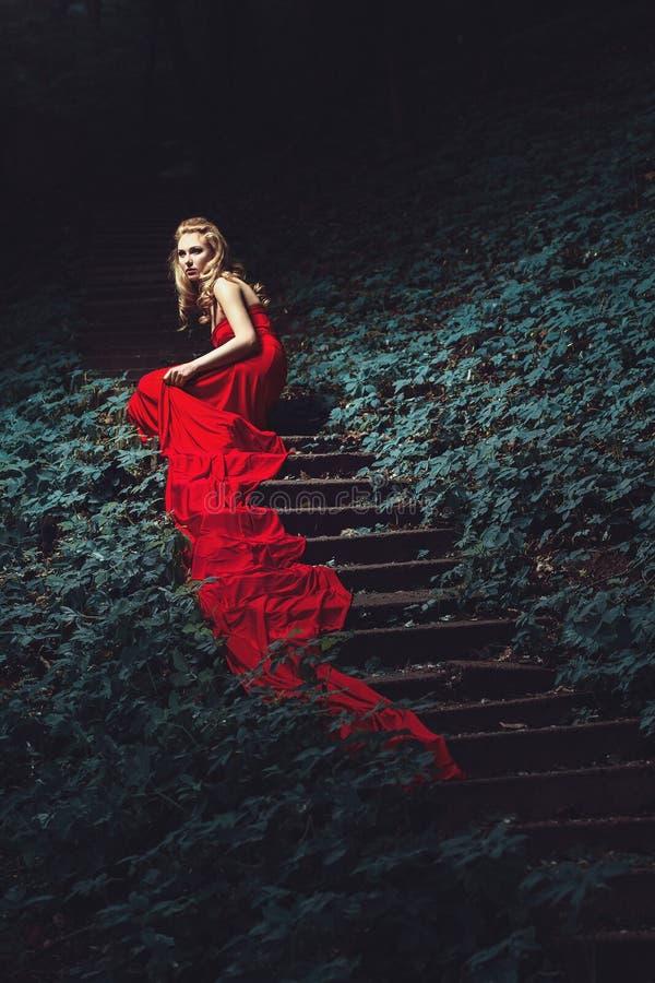 Download Młoda Kobieta Na Drabinie W Drewnie Zdjęcie Stock - Obraz złożonej z blondyny, wzrost: 65225688