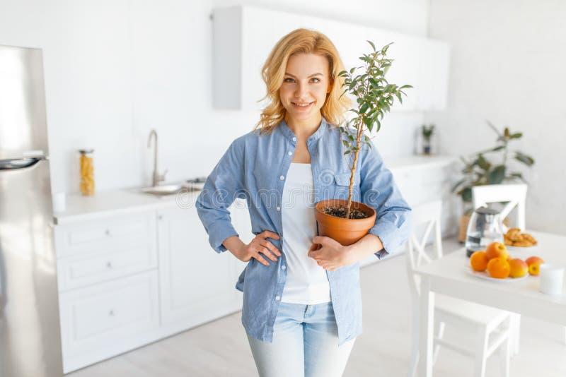 M?oda kobieta trzyma kwiatu w garnku na kuchni zdjęcie royalty free