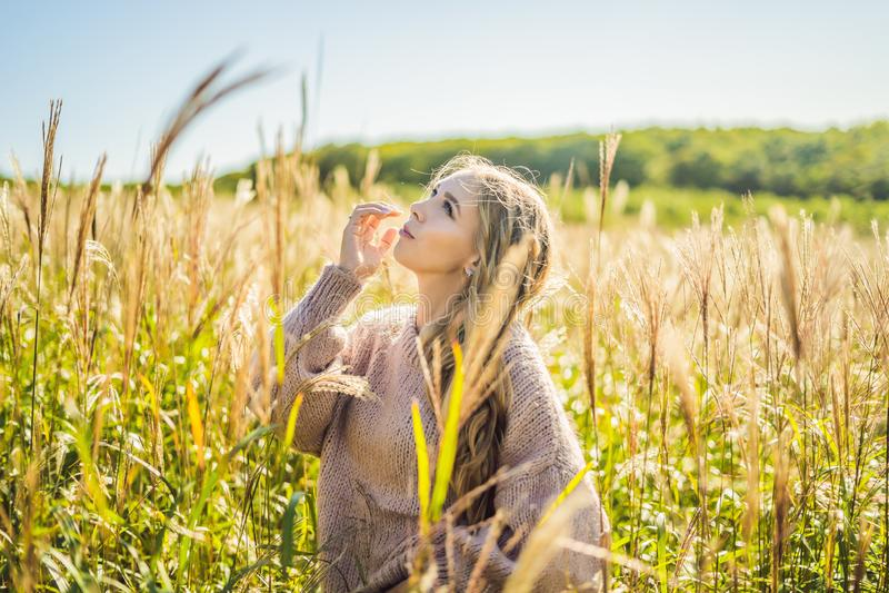 M?oda pi?kna kobieta w jesie? krajobrazie z suchymi kwiatami, banatka kolce Mody jesie?, zima Pogodna jesie?, Wygodna obraz royalty free