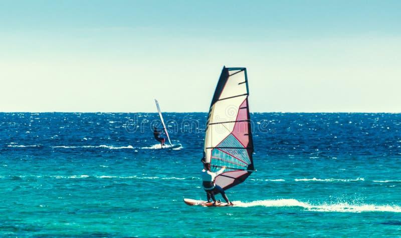 M?oda surfingowiec dziewczyna jedzie ?agiel w Czerwonym morzu w Egipt Dahab fotografia royalty free