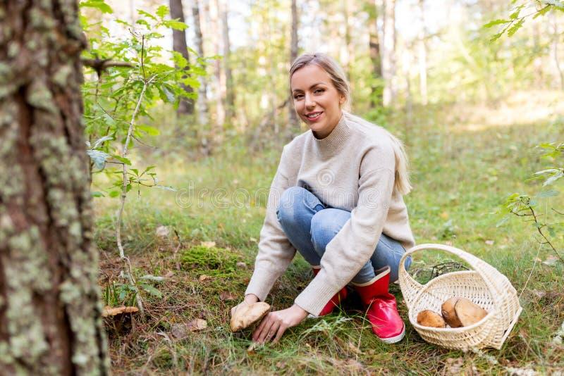 M?odej kobiety zrywanie ono rozrasta si? w jesie? lesie fotografia royalty free