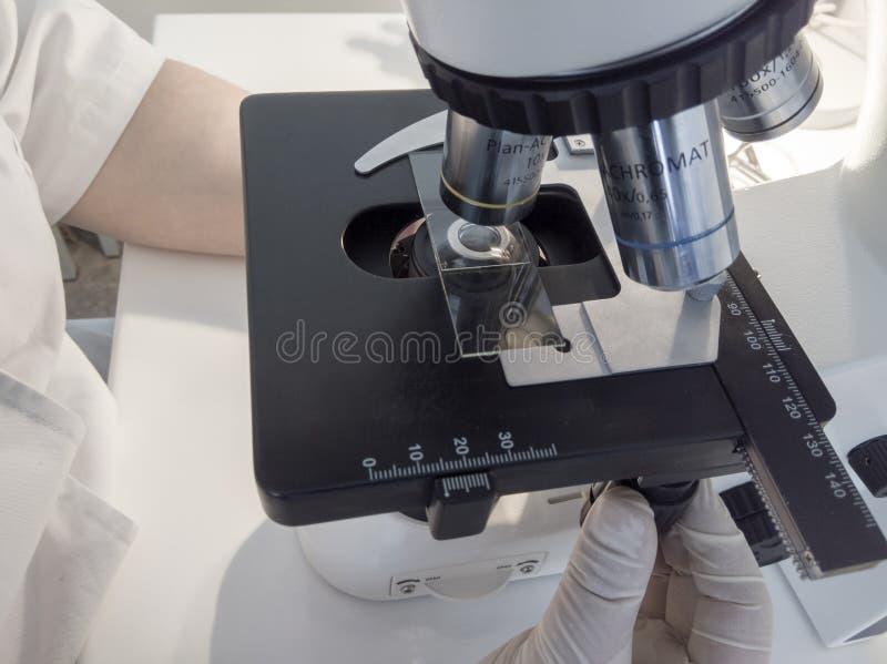 M?os do cientista com microsc?pio, as amostras de exame e o l?quido imagem de stock royalty free