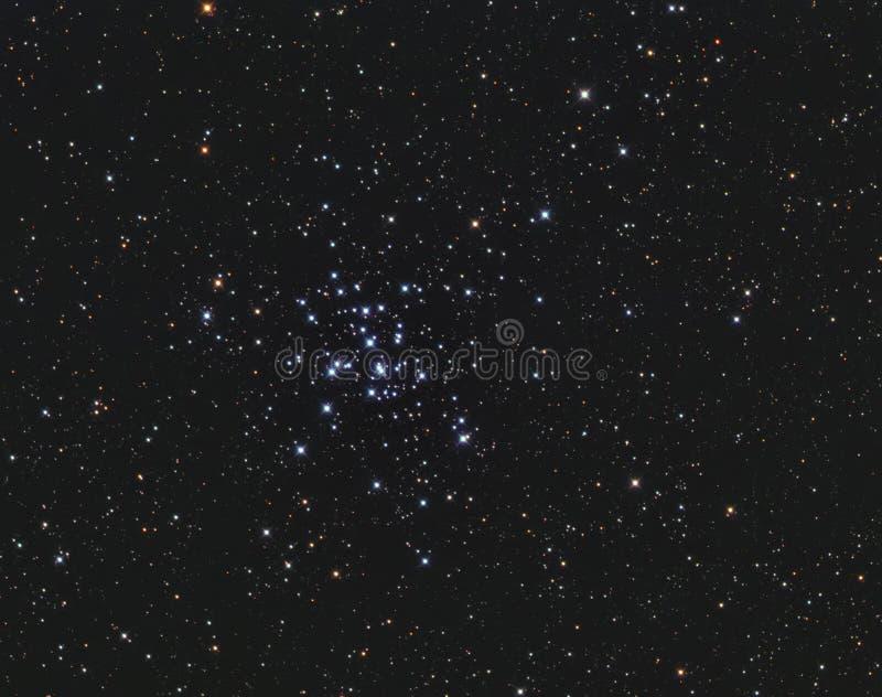 M36 Otwierają grono w Auriga fotografia royalty free