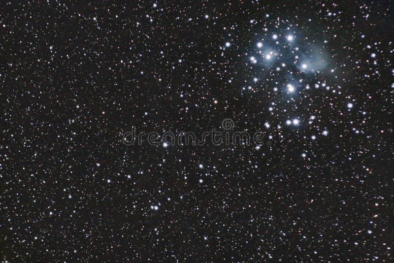 M45 - Pleiades stock fotografie